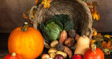 verschiedene Gemüsesorten