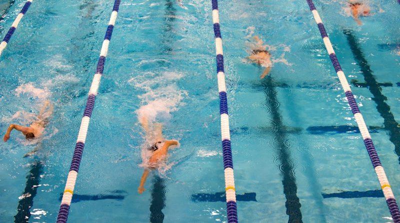 zeigt Schwimmer bei einem Wettkampf